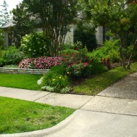 Tree, shrub, lawn and flower plantings.