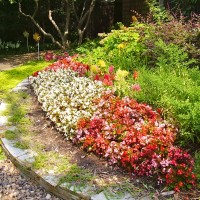 Perennial and annual flower plantings depending on your needs.